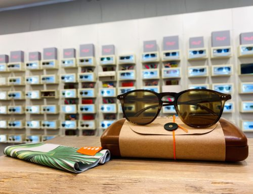 New Garett Leight Optical & Sunglasses Collection In Store